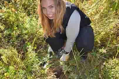 Sarah Knutie