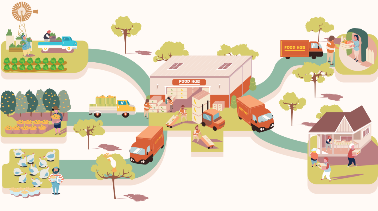 illustration of food production and distribution through central hub