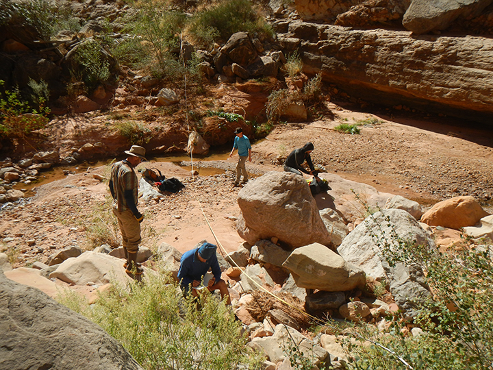 researchers standing and crouching to survey rocky desert canyon landscape