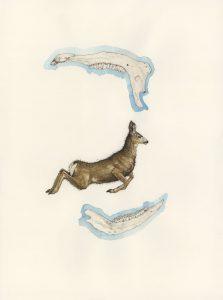 painting of deer with deer jawbones